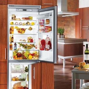 Liebherr CI1651 30 Inch Built-in Bottom-Freezer Refrigerator