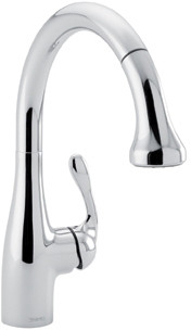 Hansgrohe Allegro E Pull-Out Faucet 04066000